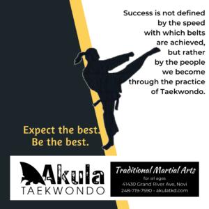 Taekwondo Graphic