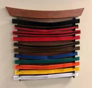 Taekwondo Belt Display