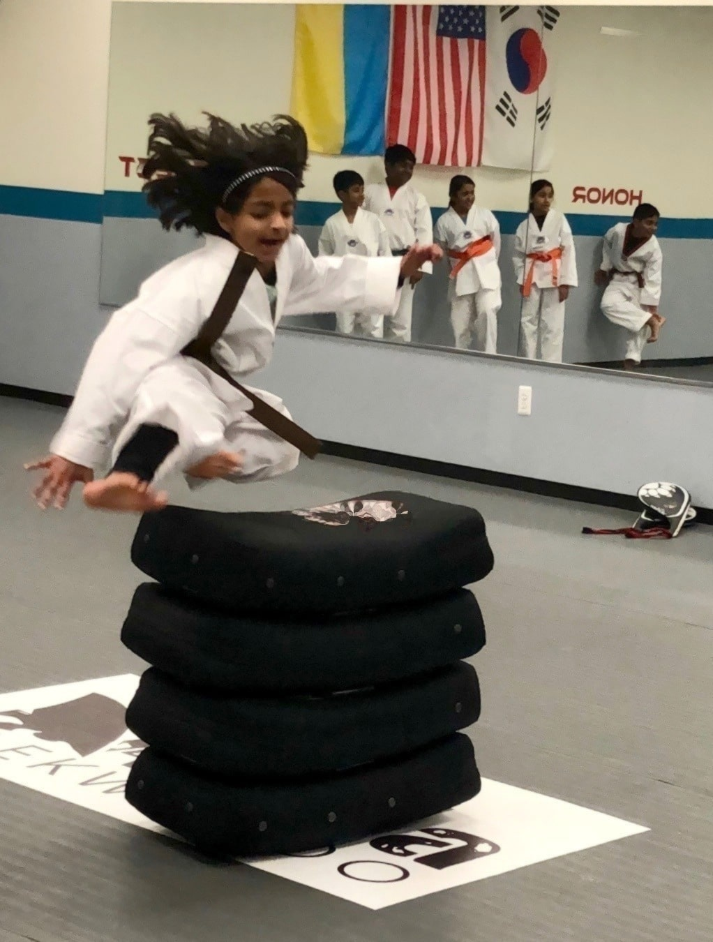 Martial Arts Taekwondo Novi