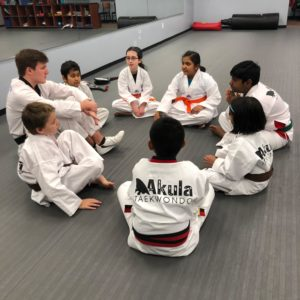 Martial Arts school in Novi teaches success through Taekwondo training