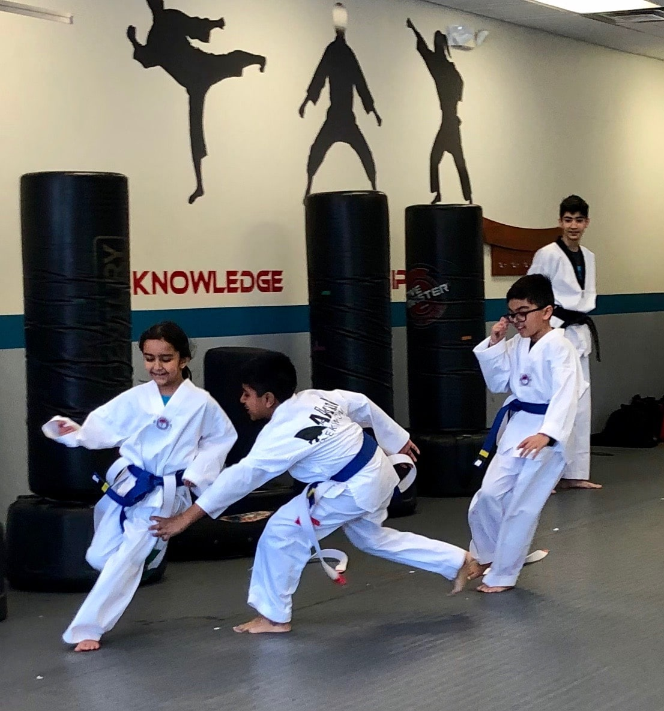 Akula Taekwondo Gallery Photo Number 5