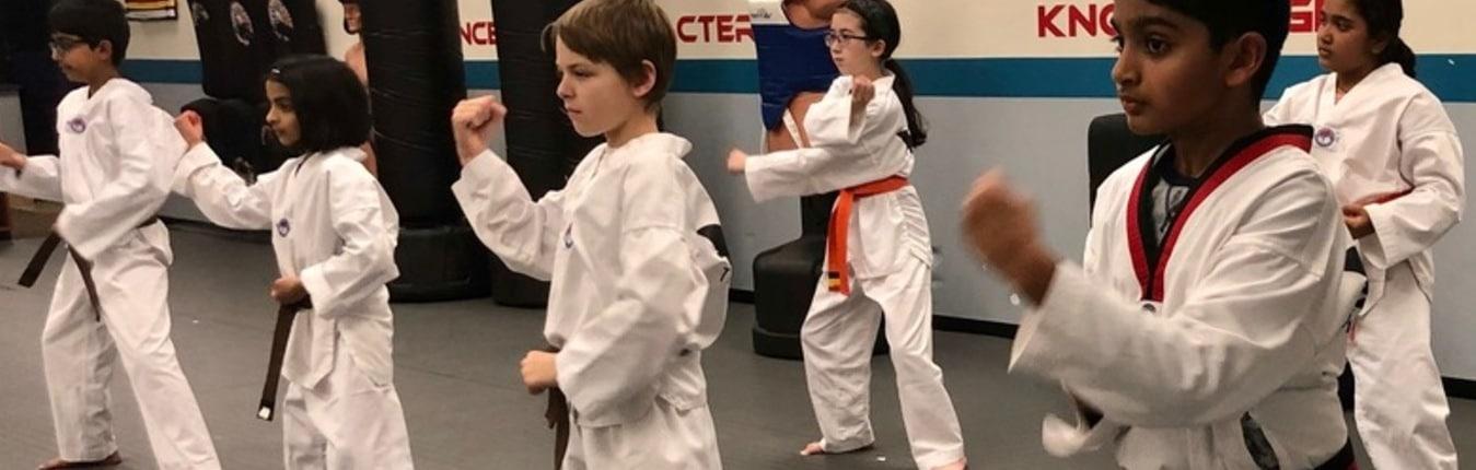 Akula Taekwondo Children's Taekwondo Program