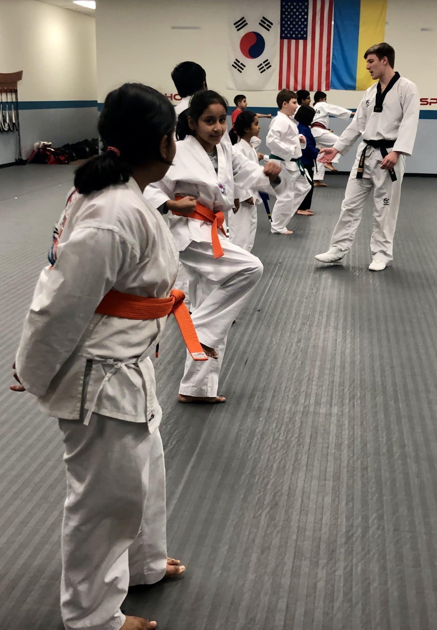 Akula Taekwondo Programs image