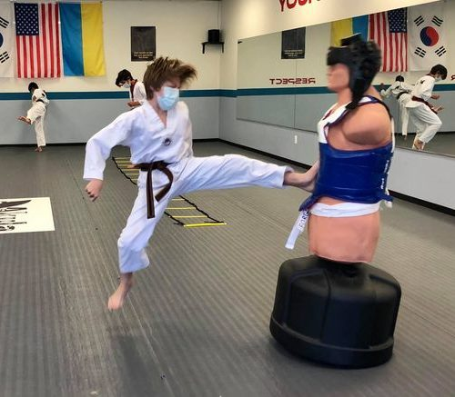 Martial Arts Classes in Novi Michigan South Lyon