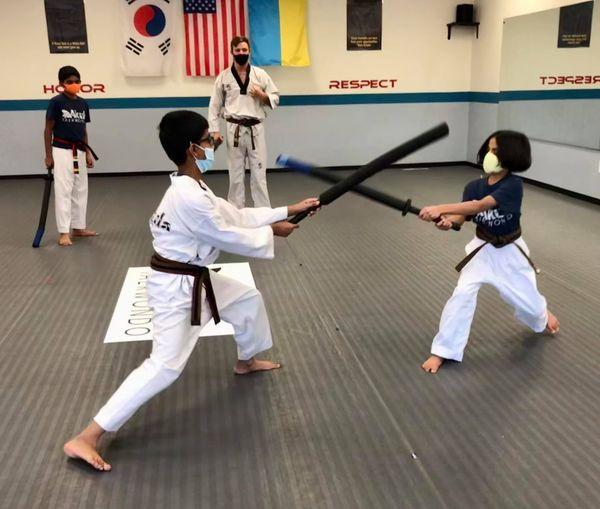Martial Arts Classes in Novi Michigan South Lyon