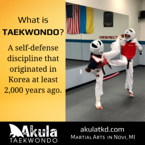 """Image shows two boys in sparring gear kicking one another and has the words """"Taekwondo (also known as Tae Kwon Do) is a self-defense discipline that originated in Korea at least 2,000 years ago."""""""