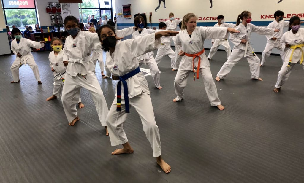 Photo of a group of children in Taekwondo Uniforms, arms thrust out as they demonstrate a spear hand