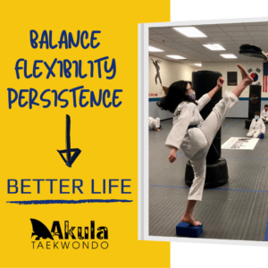 """Image shows a teenage girl standing on a yoga block and kicking a paddle held higher-than-head height. The words balance, flexibility, persistence and an arrow pointing to the words """"better life"""" accompany the photo."""