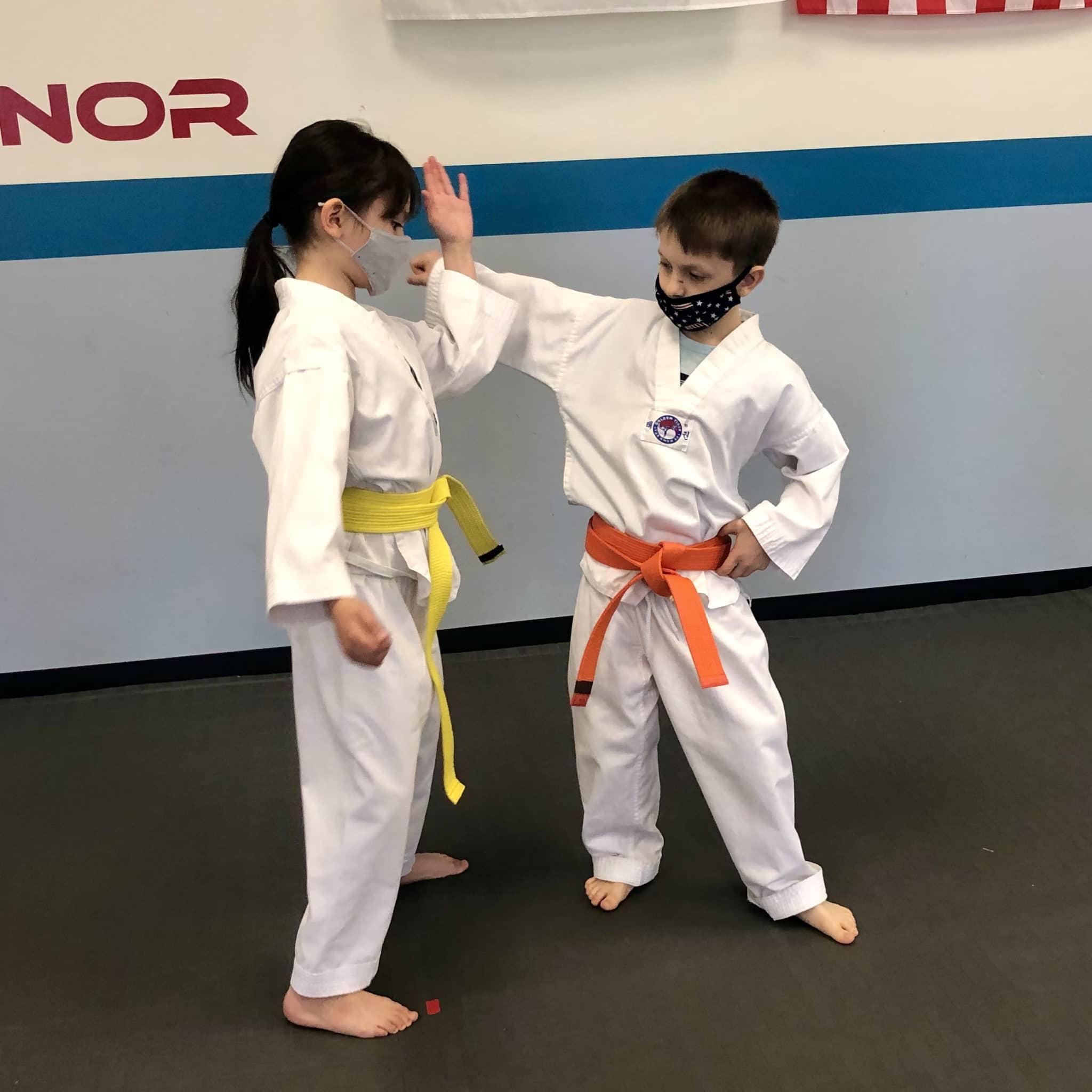 Akula Taekwondo Gallery Photo Number 25
