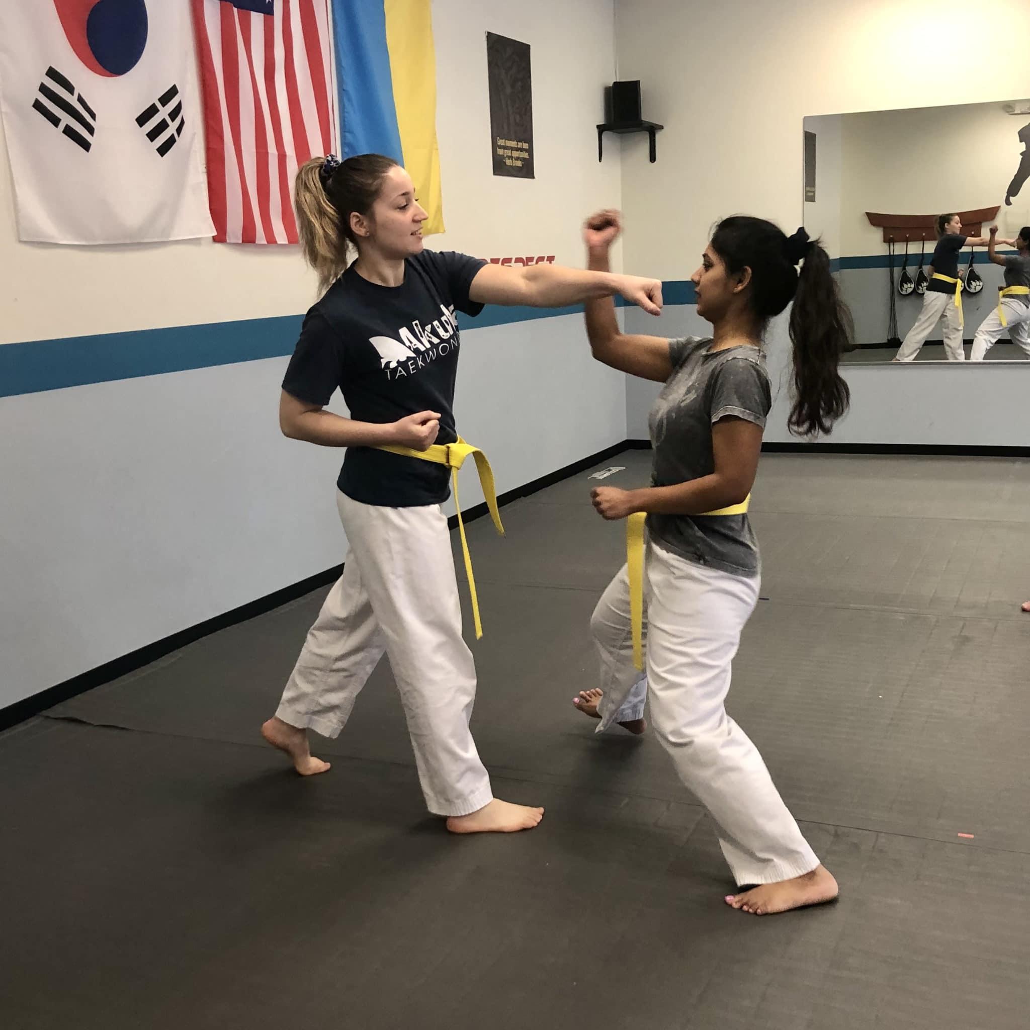 Akula Taekwondo Gallery Photo Number 26